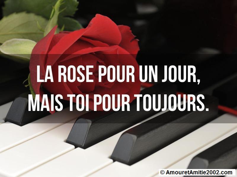 Bien-aimé Citation amour - La rose pour un jour, mais toi pour toujours NH08