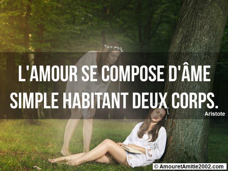 l'amour se compose d'âme simple habitant deux corps