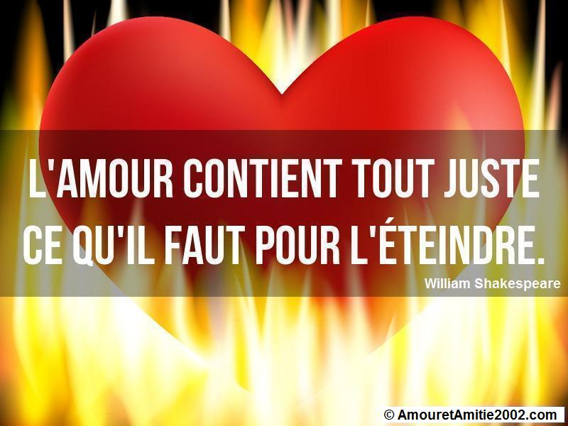 citation d'amour 147