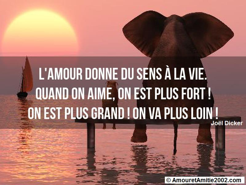 citation d'amour 163