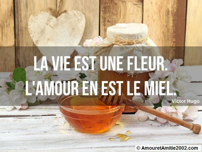 citation d'amour 190