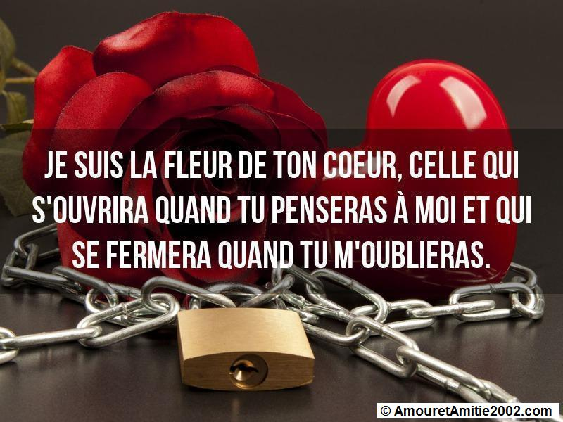 citation d'amour 23