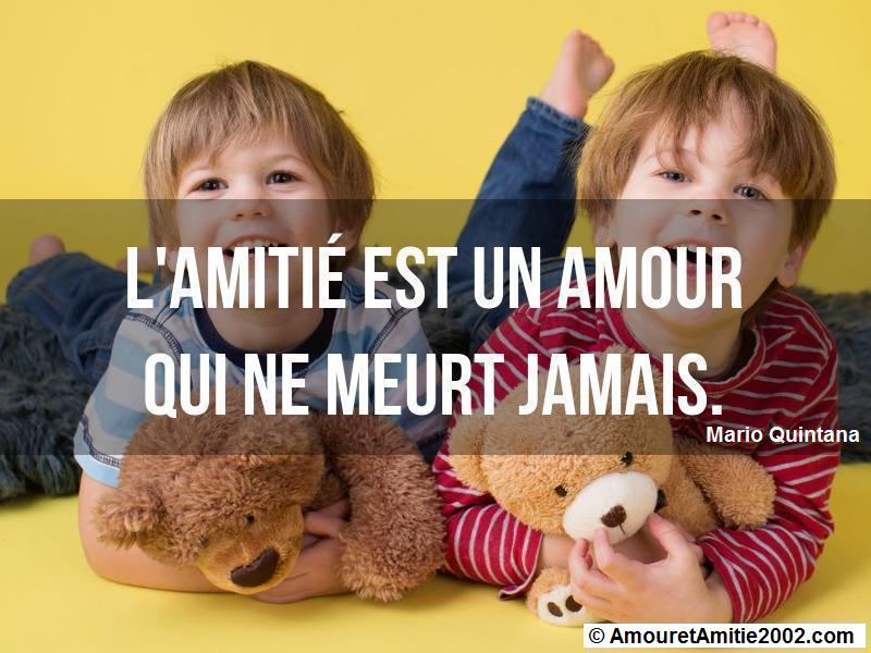 citation d'amour 289
