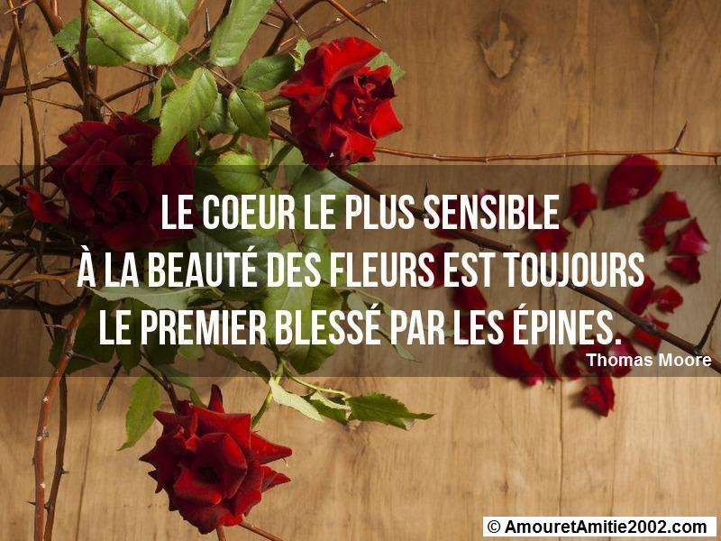 citation amour 354