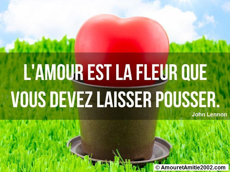 citation amour 356