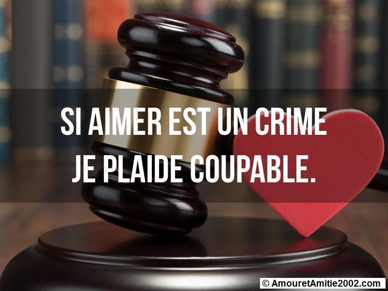 si aimer est un crime je plaide coupable