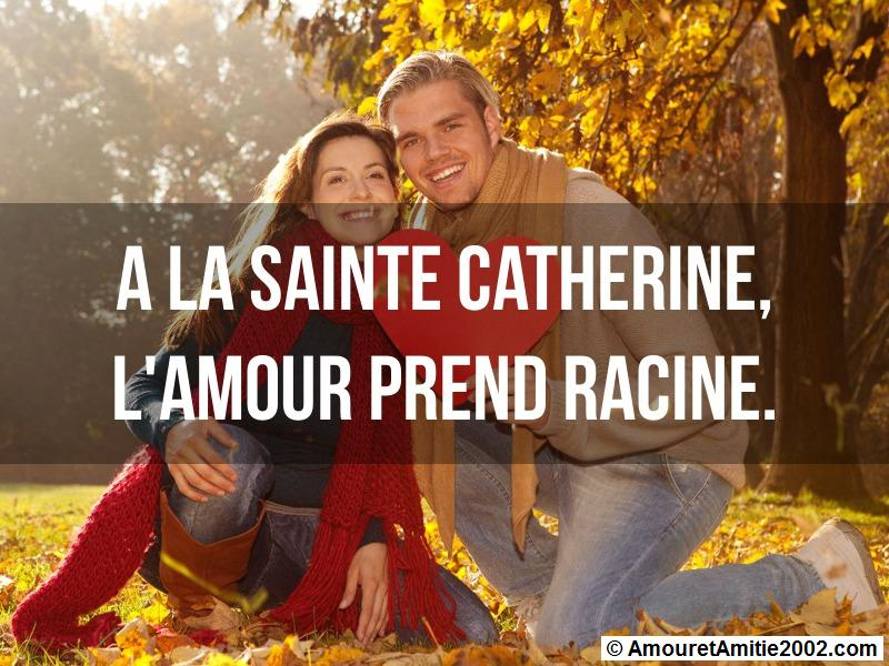 à la Sainte Catherine, l'amour prend racine