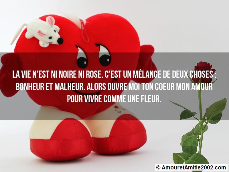 message amour 100