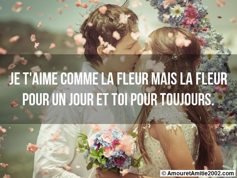 Message Amour Je Taime Comme La Fleur