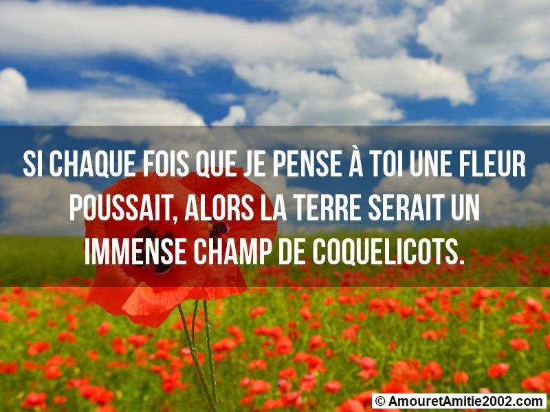 message amour 156