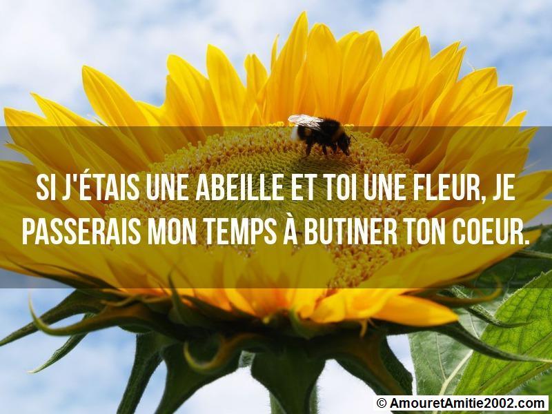 si j'étais une abeille et toi une fleur