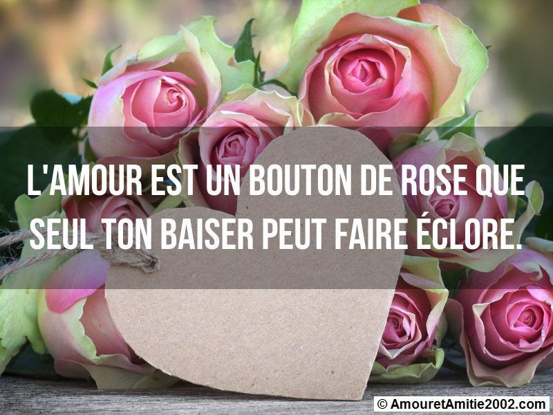 l'amour est un bouton de rose que seul ton baiser peut faire éclore