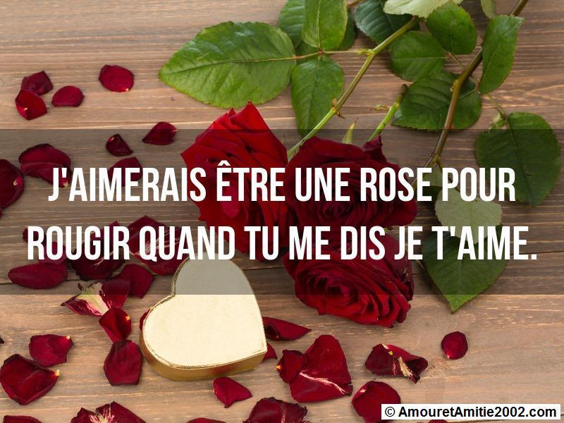 j'aimerais être une rose pour rougir quand tu me dis je t'aime