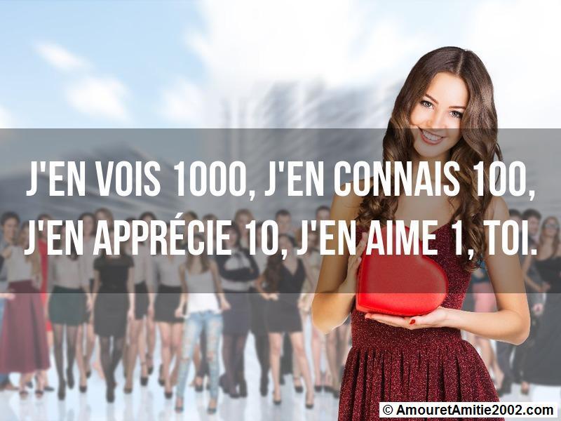J'en vois 1000 j'en connais 100 j'en apprécie 10 j'en aime 1 toi