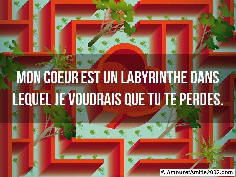 mon coeur est un labyrinthe dans lequel je voudrais que tu te perdes