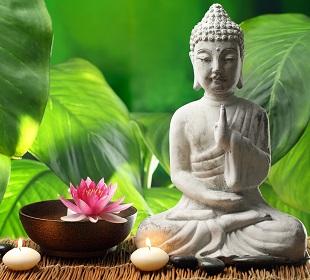 Pensées Positives Pensées Zen Citations Positives