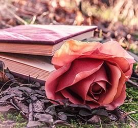 Poèmes Tristesse Poésies Sur La Tristesse