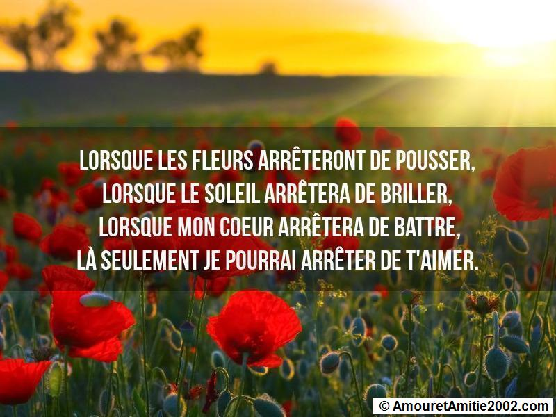 proverbe d'amour 145