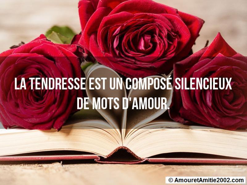 Proverbe Amour La Tendresse Est Un Composé Silencieux De
