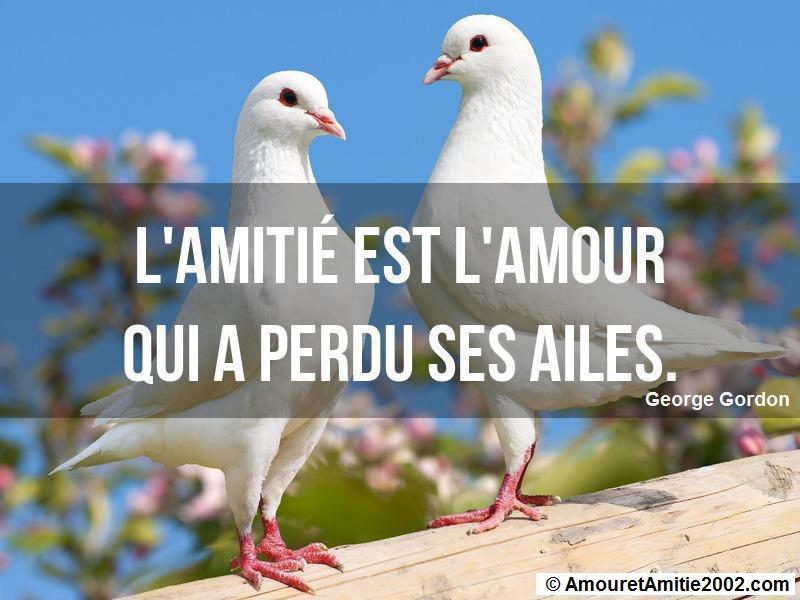 proverbe amour 272