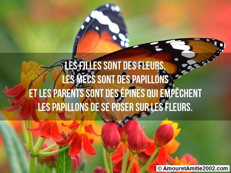 proverbe d'amour 327