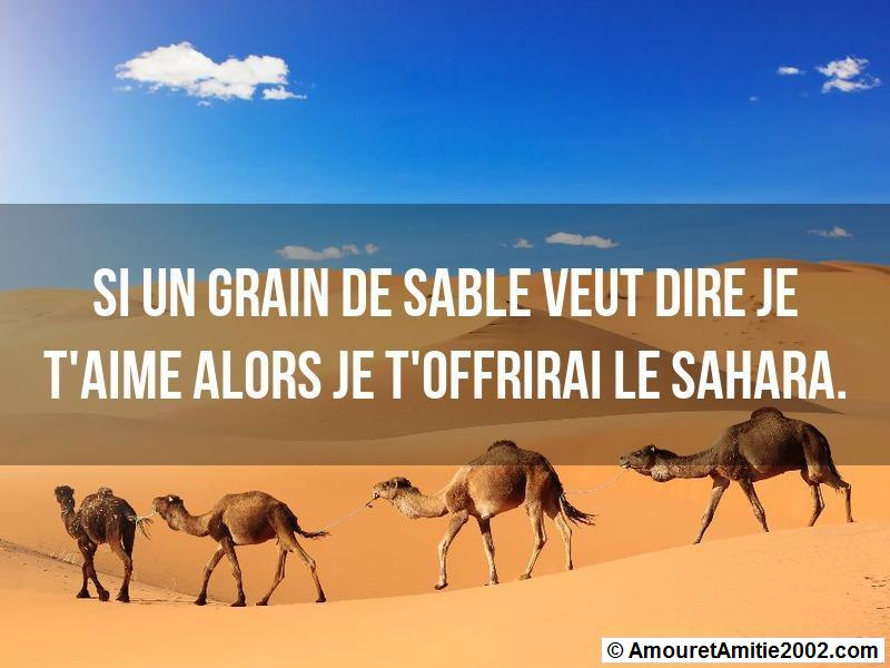 proverbe amour 339