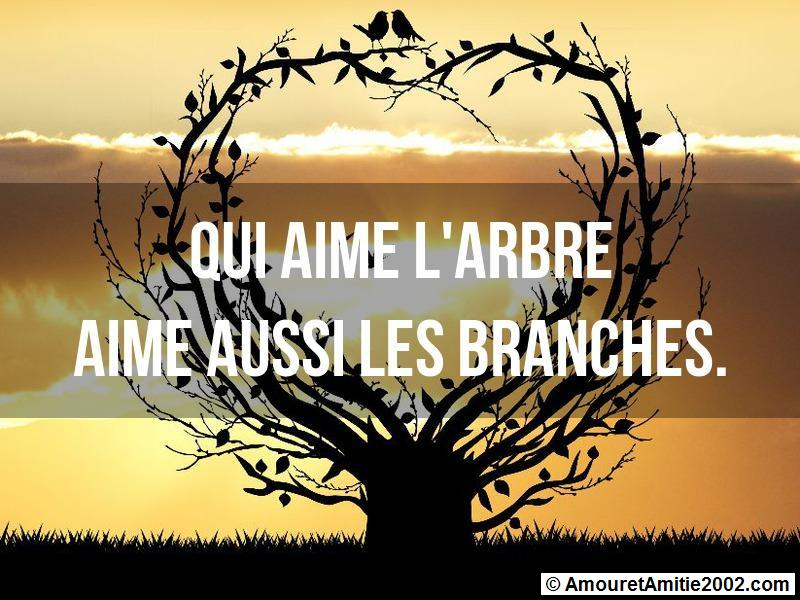 proverbe amour 347