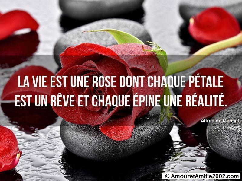 proverbe d'amour 44