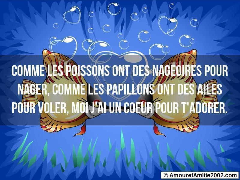proverbe d'amour 95